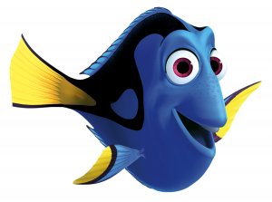 A lovable Disney character, Dory may drive demand for blue fish in beginners' aquariums. The damsels are a far better choice for most home tanks.
