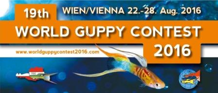 Click to learn more about the 19th World Guppy Contest