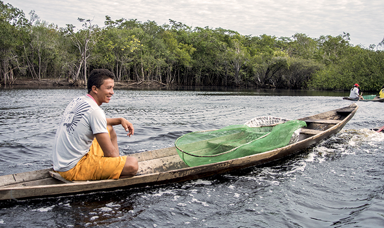 Project Piaba is working to improve and promote the aquarium fishery on the Rio Negro