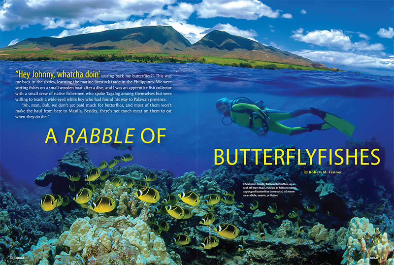 Veteran and award-winning aquarist Robert M. Fenner provides an extensive look into the word of Butterflyfishes in this 16-page crash course, with depictions of 36 species, many now overlooked.