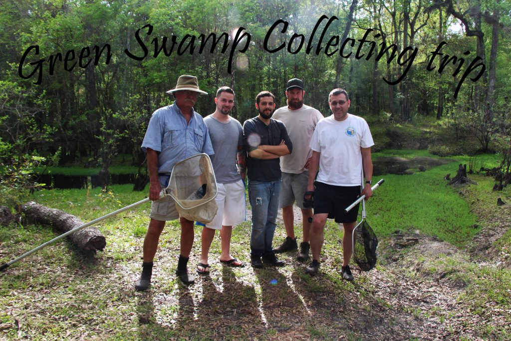 Left to right: Bill Shields, David Parks, Mike Tuccinardi, Mike Drawdy and Stephan Tanner, out collecting native fishes in Florida.