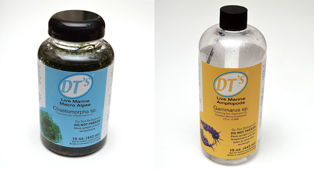 Two new products in the DT's Live-Feeds line from Sustainable Aquatics - Chaetomorpha and Hawaiian Amphipods