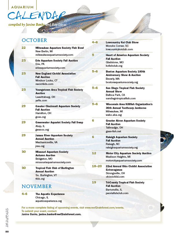 The latest AMAZONAS Magazine Aquarium Events Calendar. Have an aquarium event? Send Janine Banks or Ray Lucas an email to make sure we know about it!