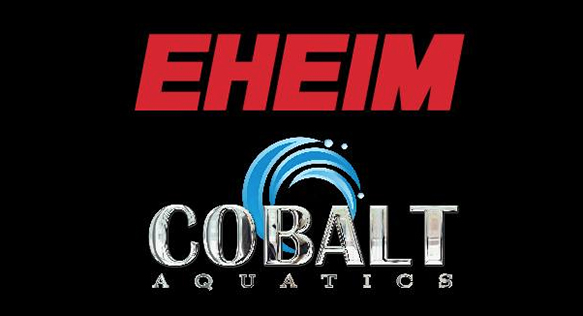 Well-known aqaurium product manufacturer Eheim is now partnered with Cobalt International