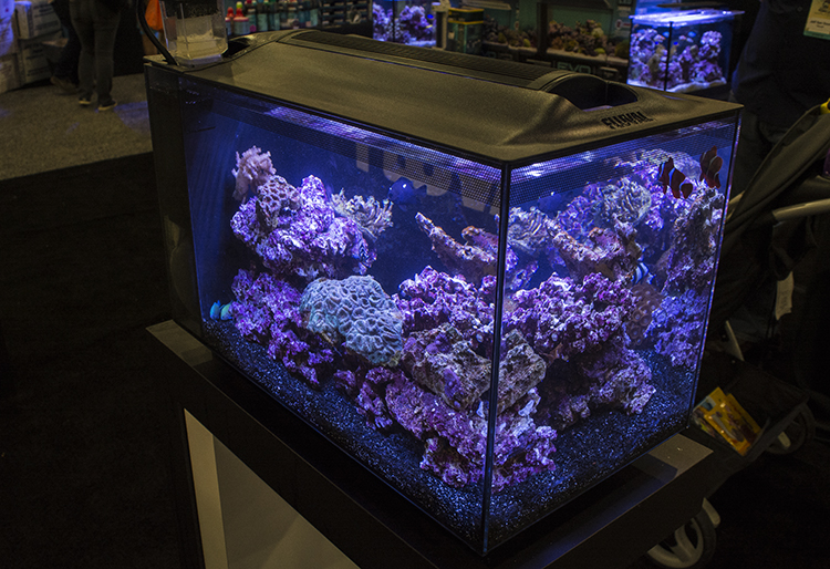 Another sleek all-in-one aquarium at Fluval's booth, the Evo 12