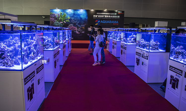 The show also held a reef tank competition