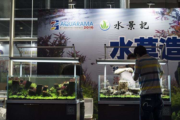 A live aquascaping event held the first day drew a large crowd
