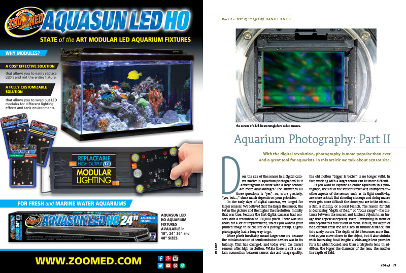 Daniel Knop returns in Aquarium Photography: Part II. This time, Knop investigates the sensor size of a digital camera and asks, does size matter in aquarium photography?