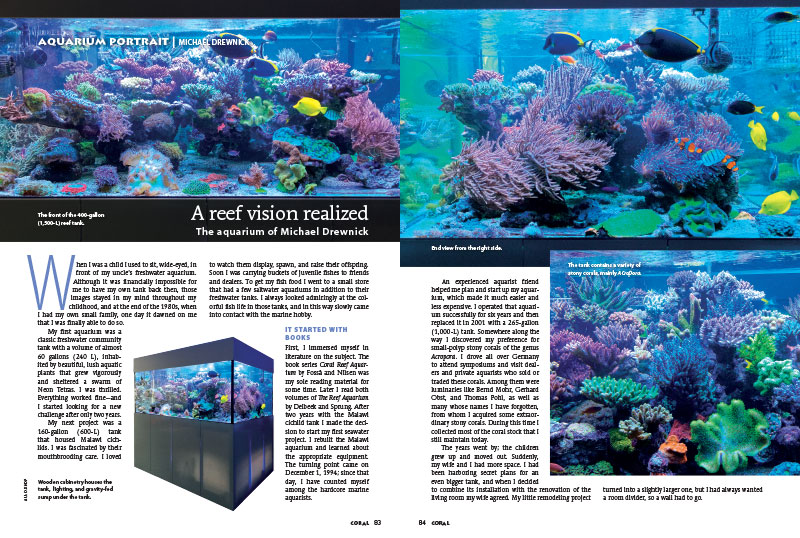 Our latest aquarium portrait features the 377 gallon reef aquarium of Michael Drewnick.