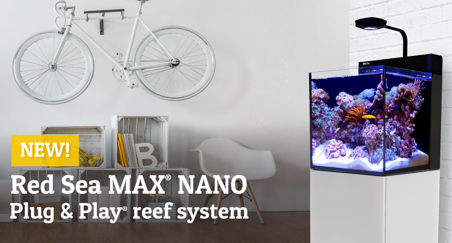 Introducing Red Sea's new MAX® NANO, a fully-featured 75 litre/20 gallon Plug & Play® reef aquarium system.