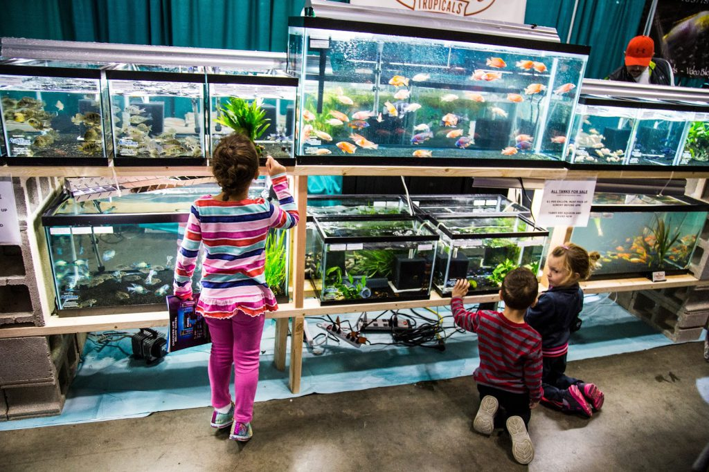 Children enjoying the display of fishes by Imperial Tropicals at the 2015 Aquatic Experience - Chicago. Image by Dan Woudenberg/LuCorp Marketing for the World Pet Association.