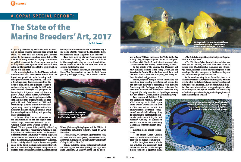 CORAL Magazine's Annual Report on the state of marine aquarium breeder efforts appears in the latest issue.