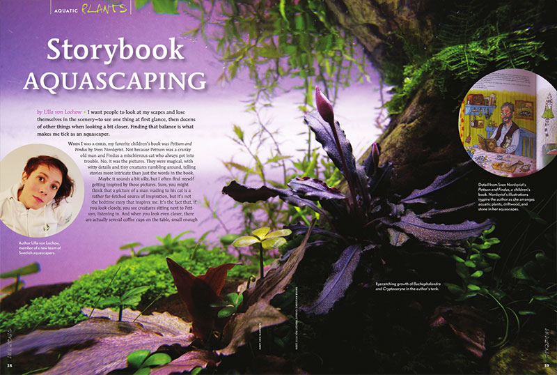 "In ""Storybook Aquascaping"", Swedish aquascaper Ulla von Lochow shares her aquascaping philosophy, drawing on inspiration from an unexpected source."