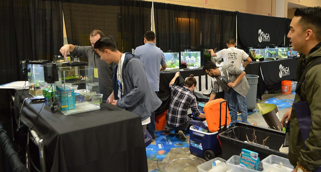 The show floor is a flurry of activity as small planted aquariums are set up.
