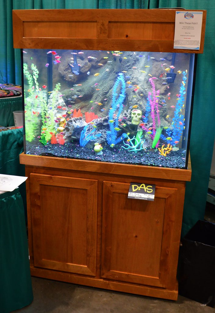 FTFFA also displayed GloFish.