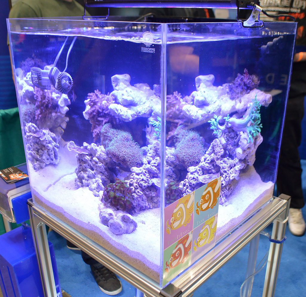 Corals and fish on display by ESHOPPS.