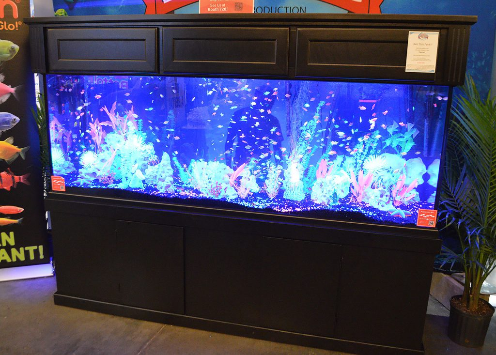 One more display at the show entrance, featuring hordes of GloFish.
