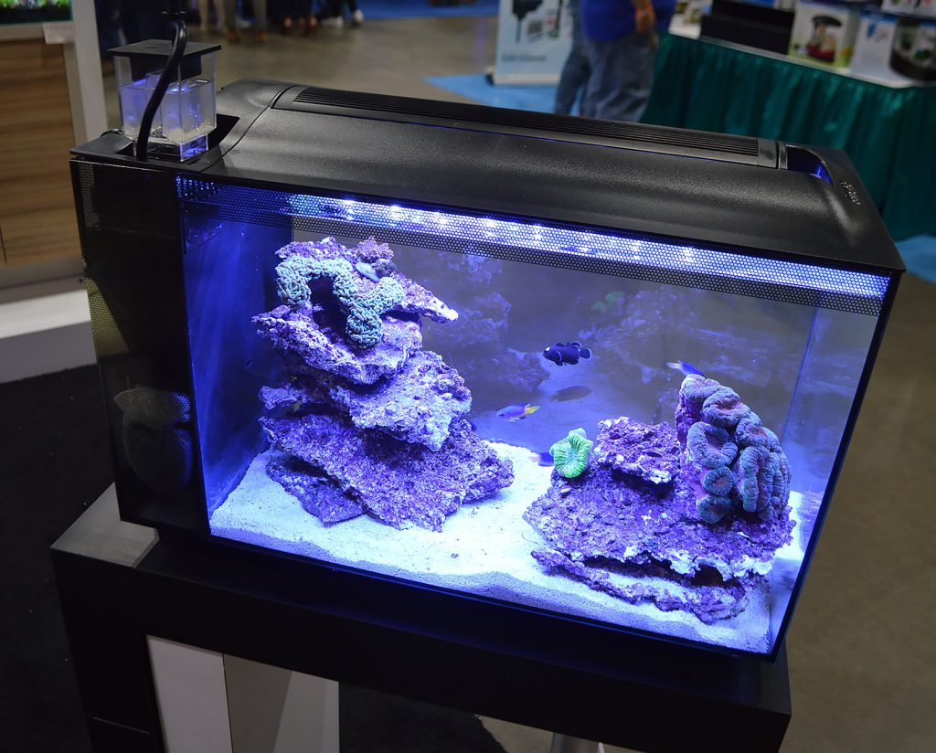 Fluval showed off multiple incarnations of the Evo 13.5 in their booth. This was the first.