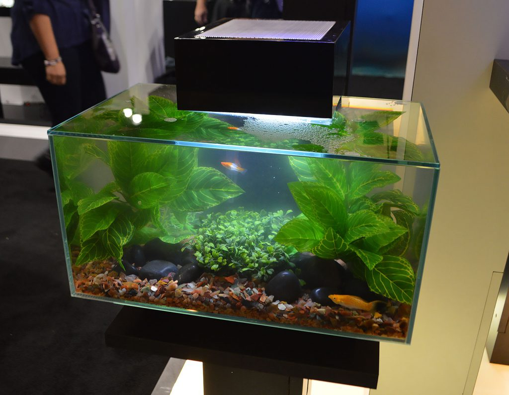 The Fluval Edge, shown here with naturally-themed artificial plant aquascaping.