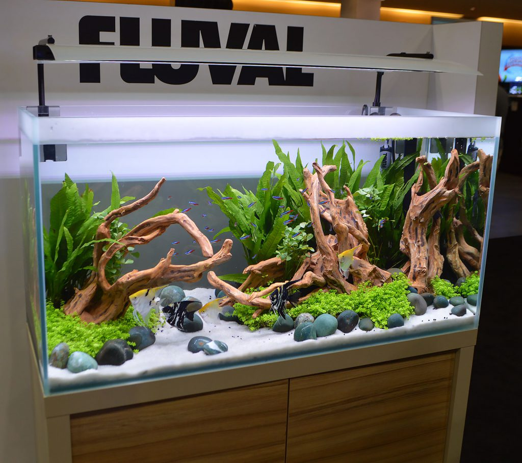Another strongly aquascaped planted aquarium shown off by Fluval; note that this is the same aquarium aquascapers used for the 2016 Aquascaping Live! competition at the show.