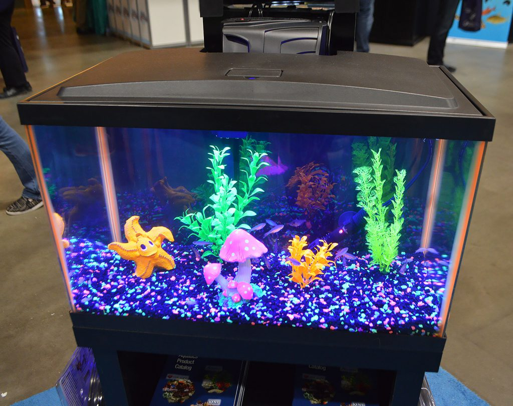 Aqueon's aquariums included this youth-themed fish tank perfect for GloFish.