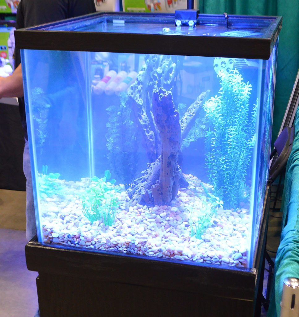 The cube style aquarium on display at the Aquatic Life booth.