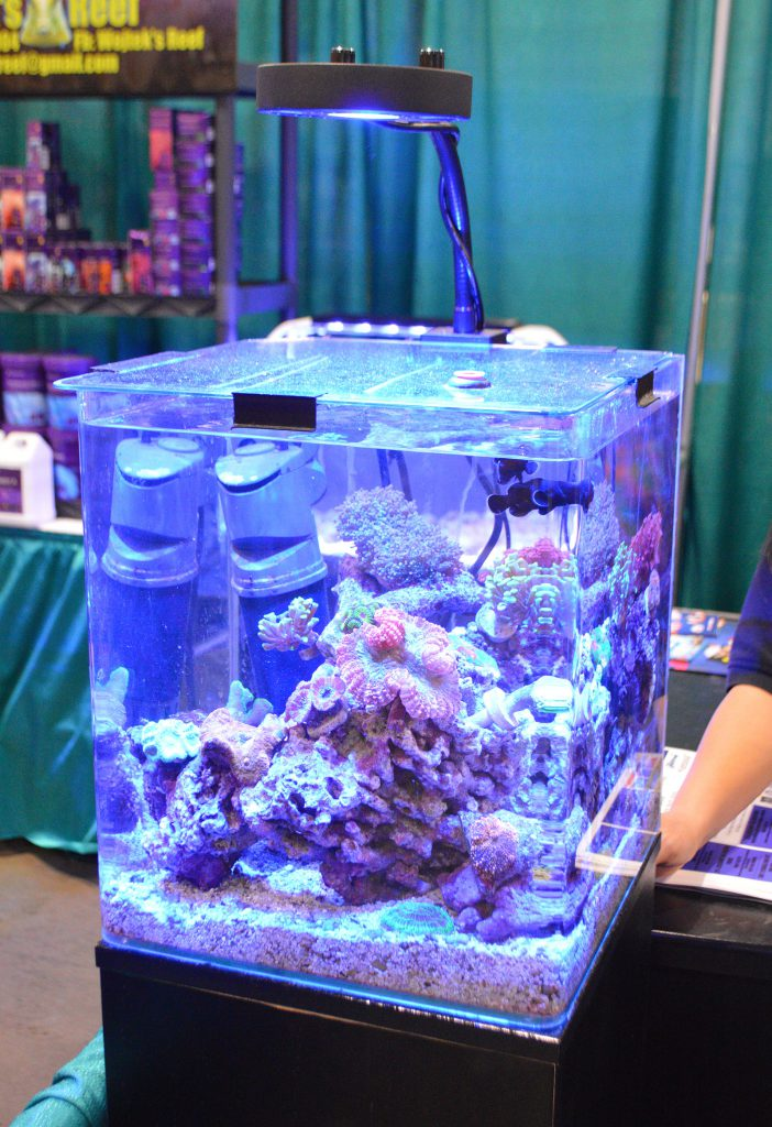 A smaller reef aquarium set up in the Kessil booth.