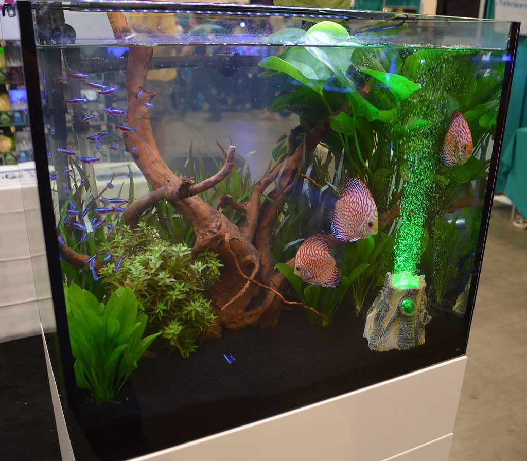 Hydor's planted Discus aquarium was punctuated with a glowing LED air volcano.