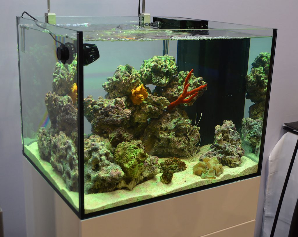 The marine aquarium display in the Hydor booth.