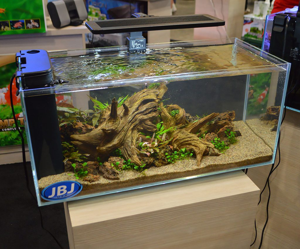 "JBJ arguably ""threw down"" with four small, and stunning, freshwater planted aquascapes. Here's the first aquarium. Update - we've learned this aquascape was designed by Bailin Shaw and John Pini, and grown out by Pini."