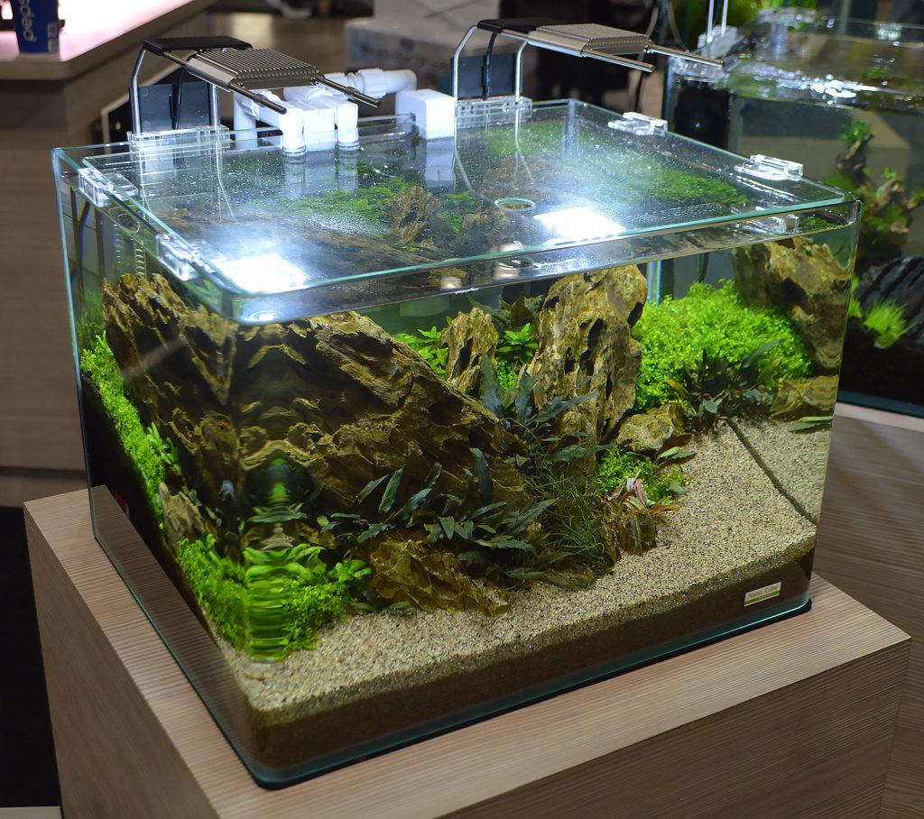 JBJ has teamed up with Dennerle, and they had multiple Dennerle products incorporated into their freshwater displays, such as the LED lighting and filtration on this co-branded Nano Cube / Dennerle tank. Update - we've learned aquascape credits go to Bailin Shaw for design, and Jo Ann Fujii for maintaining!