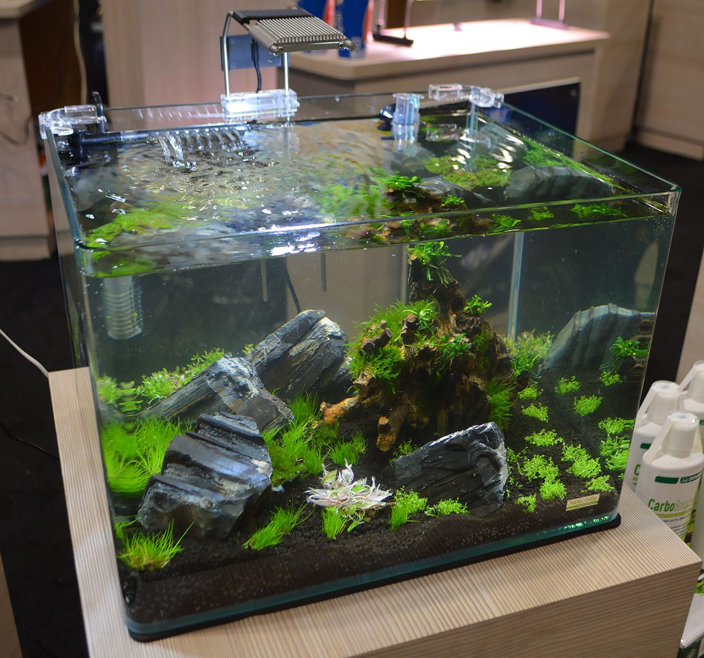 Another nano planted aquarium from JBJ.