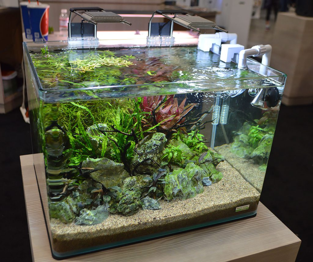 A lush, established planted aquarium, again featuring Dennerle components as part of JBJ's display. Update - Bailin Shaw gets credit for designing and maintaining this aquascape.