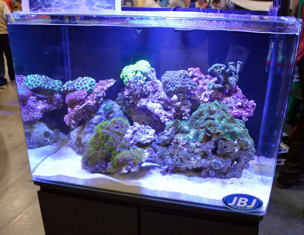 Another reef aquarium display, this one at the Pecan Grove Solutions booth.