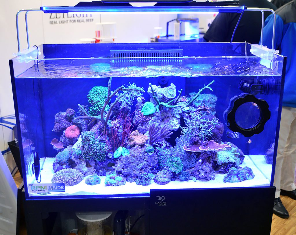 Ming Trading showed off this reef aquarium, set up by Sea Schor.
