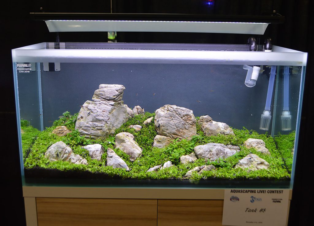 AGA Aquascaping Live 2016 Entry #8 - People's Choice Award Winner