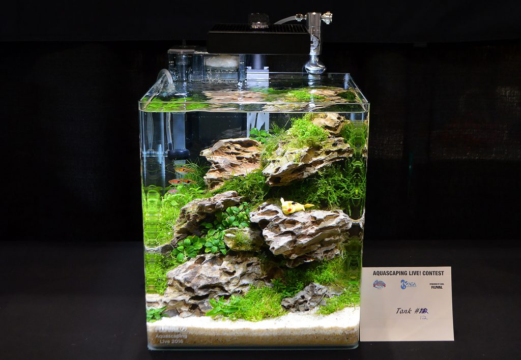 AGA Aquascaping Live 2016 Small Tank Entry #12 - Third Place Award Winner, by Marvin Lo
