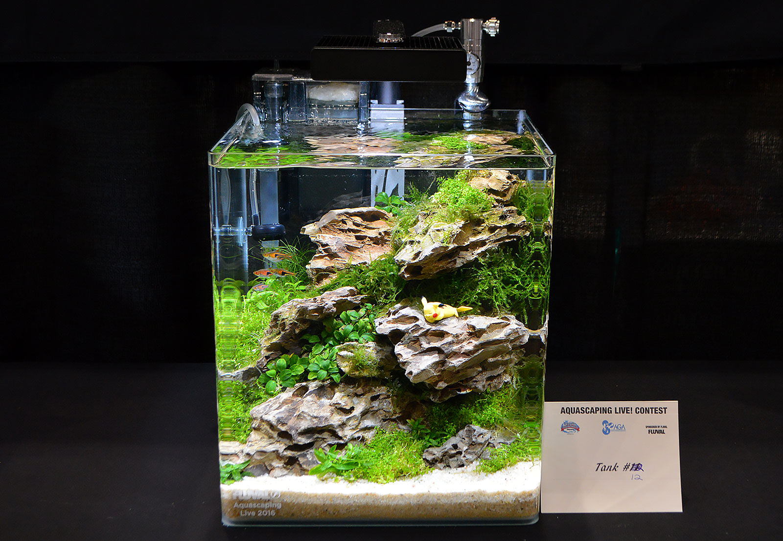 Aquascaping Live! 2016 Small Planted Tanks