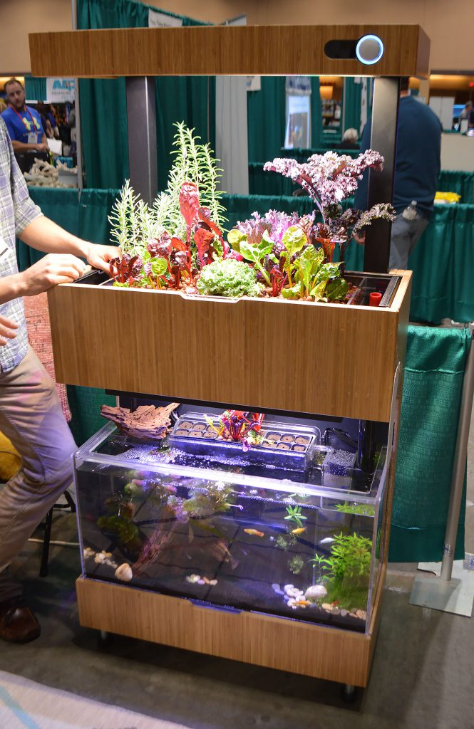 Aquaponics had a stylish presence at the Aquatic Experience; this unit is offered by Grove.