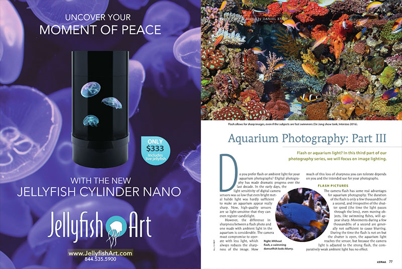 "Daniel Knop's series covering aquarium photography continues, this time asking ""Flash or aquarium light? In this third part of our photography series, we will focus on image lighting."" Don't miss it."
