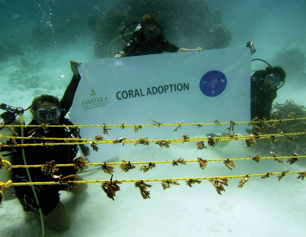 Support our conservation and rehabilitation efforts— adopt a rope or table now! Visit coralreefcpr.org for more details to make a difference.