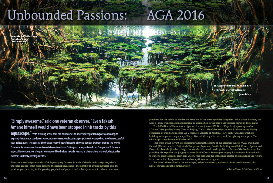 In what has become an annual tradition, we once again are delighted to share the winning aquascapes from the Aquatic Gardeners Association's annual Aquascaping Content. The 2016 pictorial is introduced by the AGA Contest Chair, Bailin Shaw.