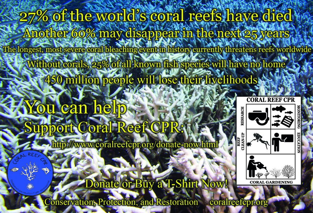 A non-profit working to study and save coral reefs, Coral Reef CPR is supported in part by donations from aquarium keepers and the marine aquarium trade.