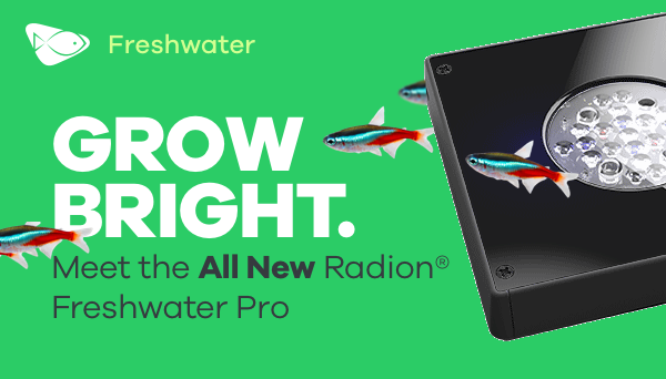 GROW RIGHT. Meet the All New Radion® Freshwater Pro