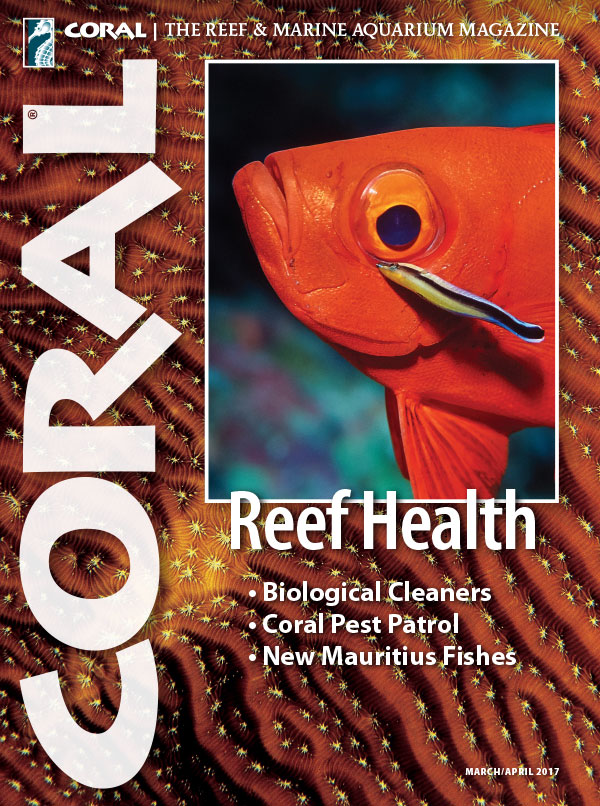 The cover of CORAL Magazine Volume 14, Issue 2 – REEF HEALTH – March/April 2017