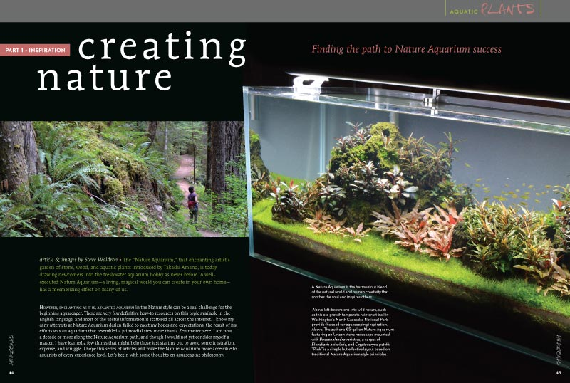"""The 'Nature Aquarium,' that enchanting artist's garden of stone, wood, and aquatic plants introduced by Takashi Amano, is today drawing newcomers into the freshwater aquarium hobby as never before."" Steve Waldron's new series, Creating Nature, will help you find the path to Nature Aquarium success."