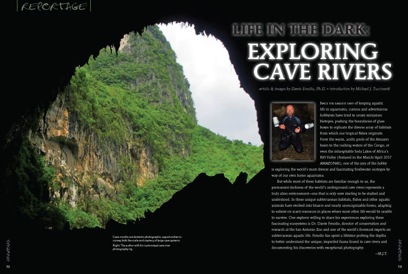 "Get way outside your comfort zone and experience ""Life in the Dark: Exploring Cave Rivers,"" by Dante Fenolio, Ph.D., with a introduction by Michael J. Tuccinardi."