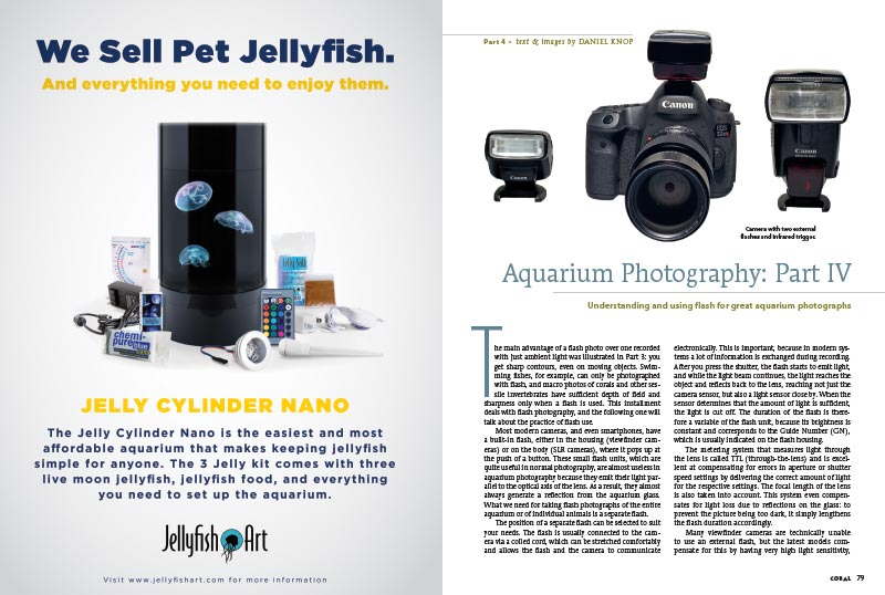 Daniel Knop's series on Aquarium Photography continues with an illuminating discussion of the various types of flashes available to you, the aquarium photographer.