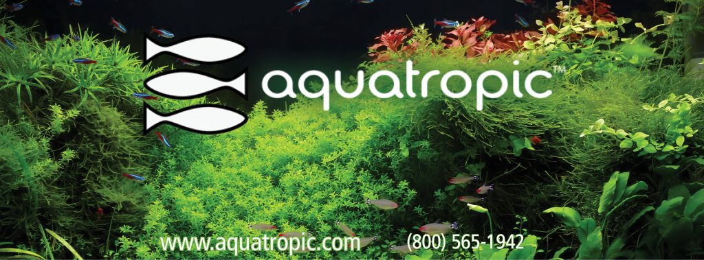 brought to you by AquaTropic