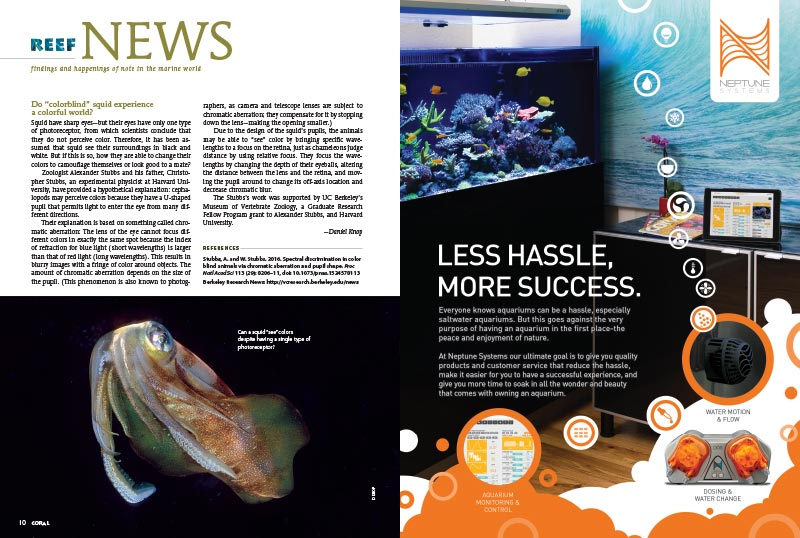 REEF NEWS brings you findings and happenings of note in the marine world. In this issue: the lives of colorblind squid, Monterey Bay Aquarium's new live reef cam, and corals thriving despite sinking pH values.